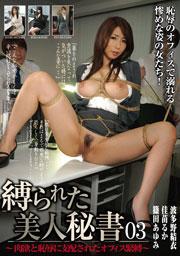 縛られた美人秘書03 ~肉欲と恥辱に支配されたオフィス緊縛~