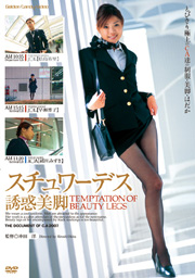 Legs Temptation Stewardess