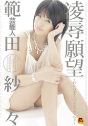 芸能人 範田紗々 凌辱願望~紗々のオマ○コぐちょぐちょ~